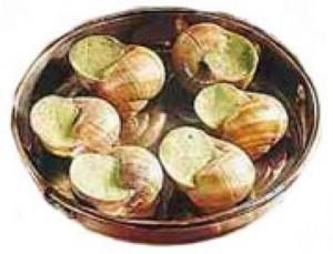 Photo d'escargots de Bourgogne