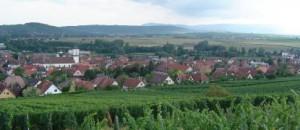 Photo de la route des vins